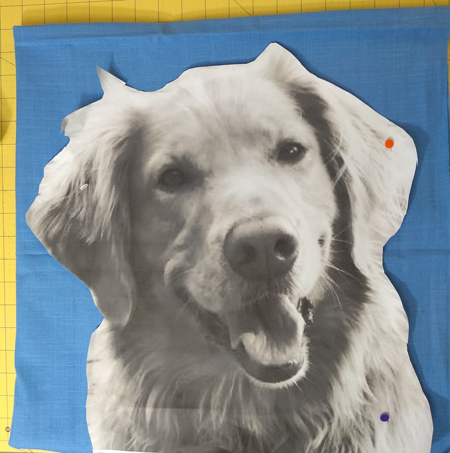 making pattern for dog
