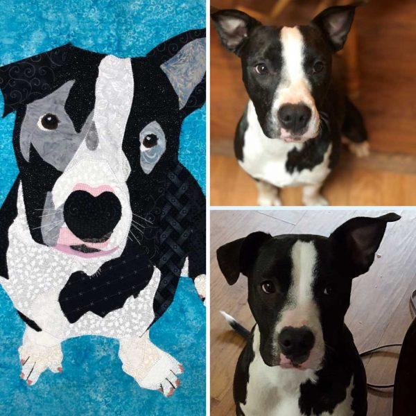 custom dog portrait of black and white dog